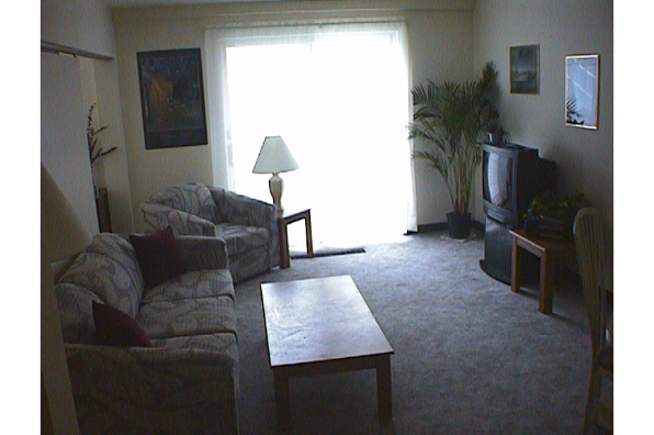 Center Ithaca, 1 Bedroom A (Photo 6)