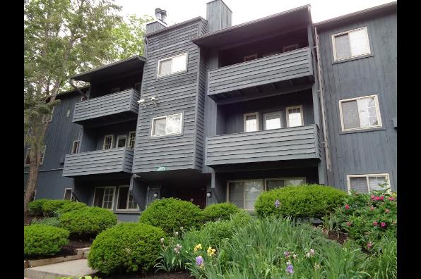Campus Hill Apartments, 3 Bedroom (Photo 5)